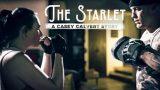 Casey Calvert (A Casey Calvert Story)